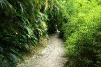 Xiamen, ogród botaniczy