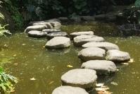 Xiamen, ogród botaniczny