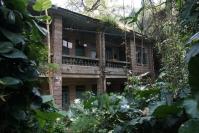Xiamen, ogród botaniczny, opuszczony dom