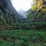 WuYiShan (武夷山) – dzień pierwszy, magiczne miejsce I