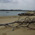 Plaża – koniec