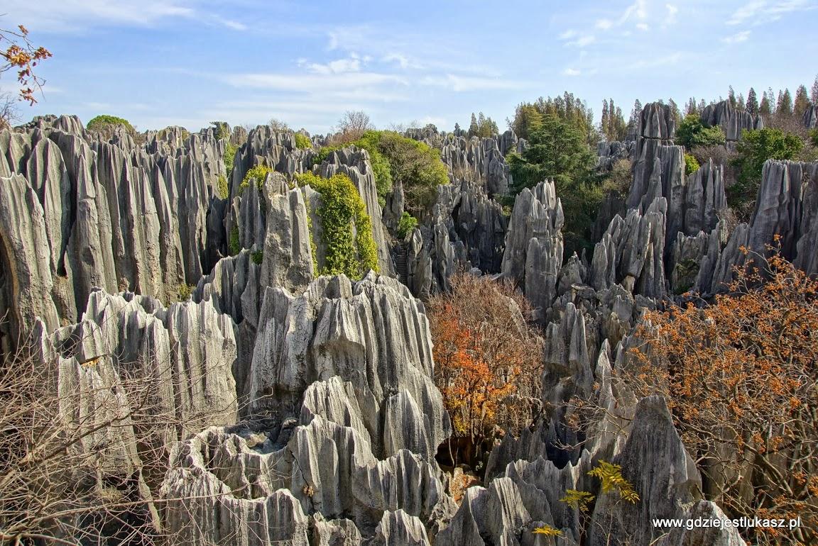 Kamienny las Lunanu
