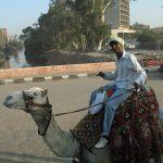 Ostatnie zdjecia z Ziemi Świętej i Egiptu