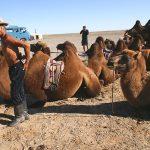 Mongolia – niesamowity dzień – cz.1