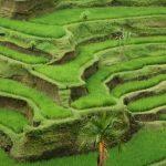 Slajdowisko: Indonezja,Singapur,Tajlandia